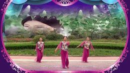 舞动中原馨蕾广场舞《半壶纱》原创舞蹈 正背面演示