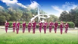 大塘角广场舞《红马鞍》编舞春英 团队正背面演示