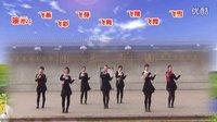 武安市东寺庄广场舞《草原嗨歌》编舞青儿 团队正背面演示