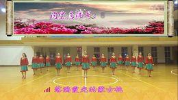 盛泽雨夜广场舞《绣满霞光的蒙古袍》原创舞蹈 团队正背面演示