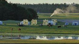 青青广场舞《绣满霞光的蒙古袍》编舞应子 团队正背面演示