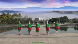 新东方广场舞《家乡》编舞张春丽 团队正背面演示
