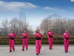 舞动旋律2007健身队《萌萌的小菊花》编舞心随 附正背面口令分解教学演示