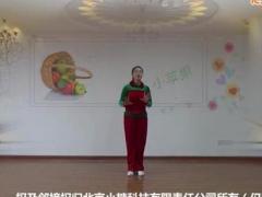 応子广场舞《小苹果》原创舞蹈 附正背面口令分解教学演示