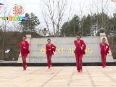 杨丽萍广场舞《大圣贺猴年》原创秧歌新年舞 附正背面口令分解教学演示
