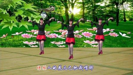武安市东寺庄广场舞《花儿妹妹》编舞青儿 正背面演示