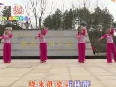 杨丽萍广场舞《为红颜》原创简单易学的古典舞 附正背面口令分解教学演示