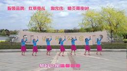 盛泽雨夜广场舞《紫色丫丫》原创舞蹈 附正背面口令分解教学演示