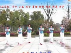 动动广场舞《恋无悔》原创舞蹈 附正背面口令分解教学演示