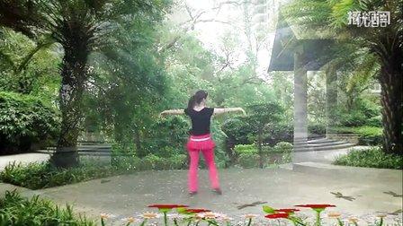 大湾群联广场舞《人生烈酒》原创舞蹈 附正背面口令分解教学演示