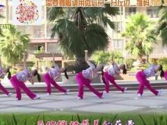 杨丽萍广场舞《做你的雪莲》原创形体拉伸操 附正背面口令分解教学演示