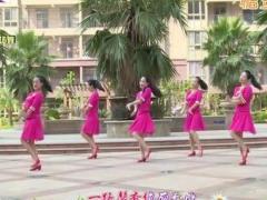 杨丽萍广场舞《柔柔的眼波柔柔的你》原创大众韵律广场舞 附正背面口令分解教学演示
