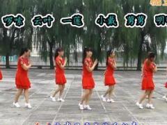 太湖一莲广场舞《放不下的情缘》原创舞蹈 附正背面口令分解教学演示