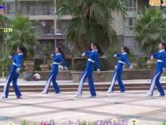 杨丽萍广场舞《嫁个好老公》原创64步动感步子舞 附正背面口令分解教学演示