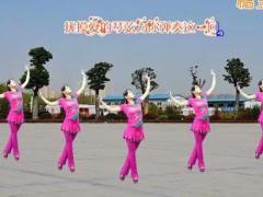 鄂州益馨广场舞《歌在飞》原创步子舞 附正背面口令分解教学演示
