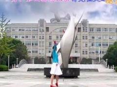 天使之翼广场舞《时光海湾》原创舞蹈 附正背面口令分解教学演示