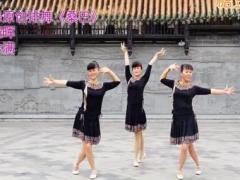 吉美广场舞《桑巴》原创排舞 附正背面口令分解教学演示