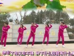 杨丽萍广场舞《想忘忘不得》原创现代舞 附正背面口令分解教学演示