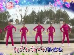 杨丽萍广场舞《旧的不去新的不来》原创舞蹈 附正背面口令分解教学演示