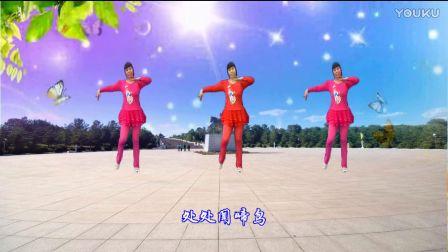 武安市东寺庄广场舞《金鸡报晓》编舞凤凰六哥 正背面演示