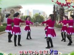杨丽萍广场舞《苗乡侗寨请你来》原创民族舞圈圈舞 附正背面口令分解教学演示