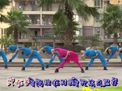 杨丽萍广场舞《邂逅》原创拉伸形体舞 附正背面口令分解教学演示