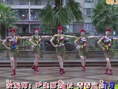 杨丽萍广场舞《美丽的遇见》原创舞蹈 附正背面口令分解教学演示