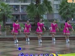 杨丽萍广场舞《想啊》原创16步入门舞 附正背面口令分解教学演示