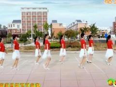 惠汝广场舞《花开的时候你就来看我》原创舞蹈 附正背面口令分解教学演示