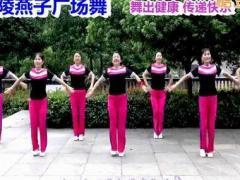 沅陵燕子广场舞《最贵是健康》原创健身操 附正背面口令分解教学演示