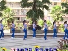 杨丽萍广场舞《让爱领舞》原创活力健身操 附正背面口令分解教学演示