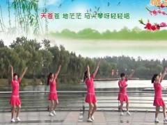 青儿广场舞《天边的故乡》原创藏风花球健身舞 附正背面口令分解教学演示