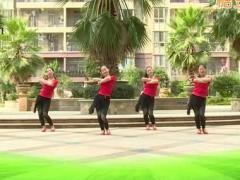 杨丽萍广场舞《甘心情愿爱着你》原创舞蹈 附正背面口令分解教学演示
