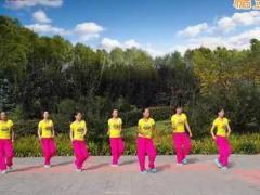 舞动旋律2007广场舞《国家》原创舞蹈 附正背面口令分解教学演示