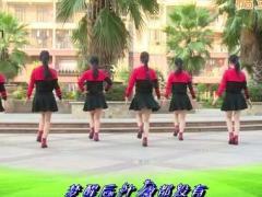 杨丽萍广场舞《爱你的人泪在流》原创舞蹈 附正背面口令分解教学演示