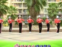 杨丽萍广场舞《我爱的姑娘嫁给我》原创魅力现代舞 附正背面口令分解教学演示