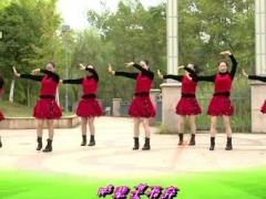 杨丽萍广场舞《我不是那种随便的人》原创韵律瘦身 附正背面口令分解教学演示