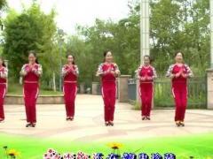 杨丽萍广场舞《大丰收老冰棍》原创韵律瘦身舞 口令分解动作教学演示