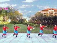 苏州盛泽雨夜广场舞《蓝色天梦》原创附教学 口令分解动作教学演示
