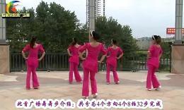 杨丽萍广场舞《天蓝蓝》原创舞蹈 团队正背面演示