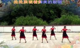 婷婷飞舞广场舞《我爱广场舞》原创舞蹈 团队演示