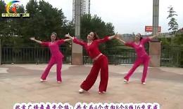 杨丽萍广场舞《自由飞翔》原创舞蹈 团队正背面演示
