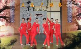 天姿广场舞《落花情》编舞程宇 团队演示 附正背面分解教学