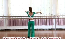 杨丽萍广场舞《伤不起的爱情伤不起的你》原创舞蹈 团队演示 附背面口令分解教学
