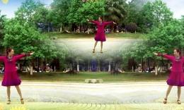 惠子广场舞《特别的爱给特别的你》编舞応子