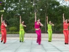 杨丽萍广场舞《请到天涯海角来》原创舞蹈 附正背面口令分解教学演示