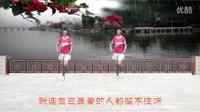 武安市东寺庄广场舞《大雨还在下》编舞青儿 正背面演示
